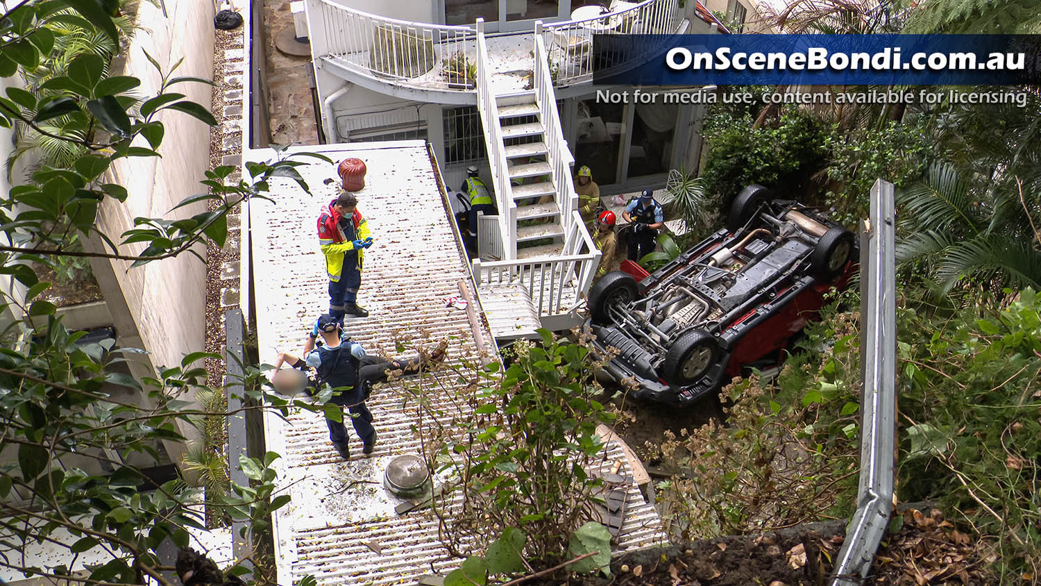 Two men escape death after car plunges 10 metres over a cliff in Bellevue Hill